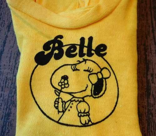 Belle-500